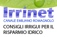 logo-irrinet